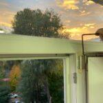 Регулировка и смазка фурнитуры на створке окна
